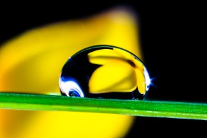 drop-of-water-361097_1920